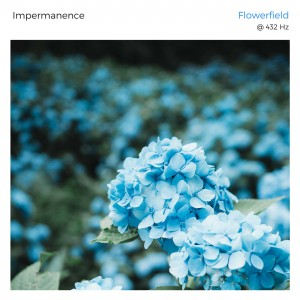 Impermanence - Flowerfield - album - cover